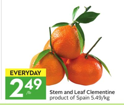 Stem and Leaf Clementine