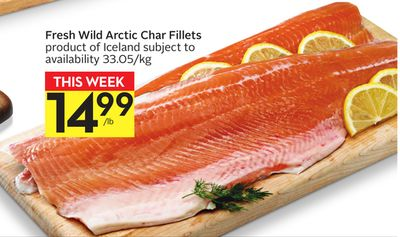 Fresh Wild Arctic Char Fillets