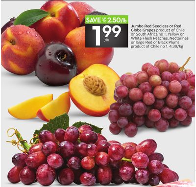 Jumbo Red Seedless or Red Globe Grapes