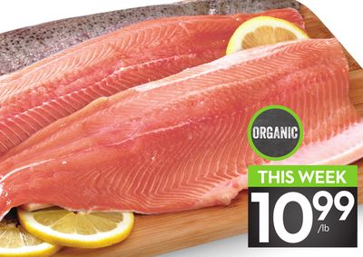 Fresh Organic Trout Fillets