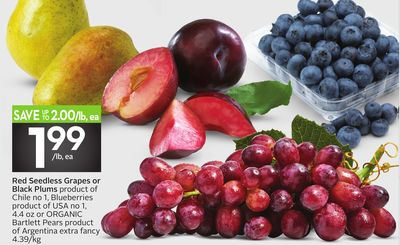 Red Seedless Grapes or Black Plums - 50 Air Miles Bonus Miles