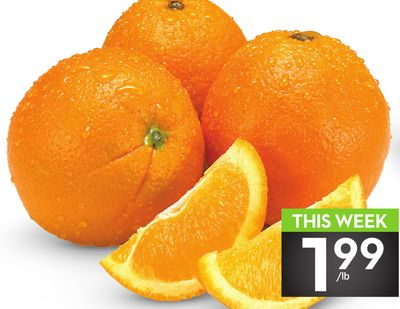 Large Seedless Oranges
