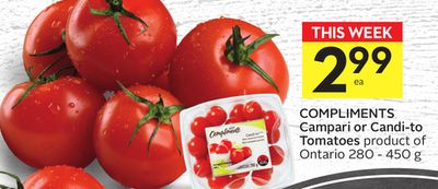 Compliments Campari or Candi-to Tomatoes
