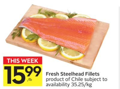 Fresh Steelhead Fillets