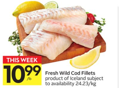 Fresh Wild Cod Fillets