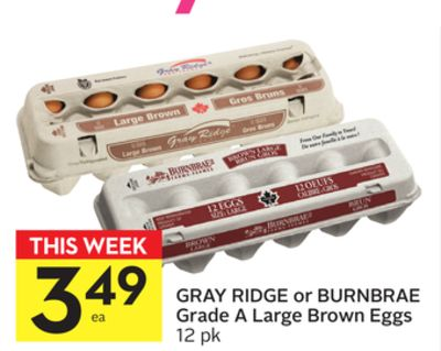 Gray Ridge or Burnbrae Grade A Large Brown Eggs