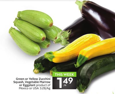 Green or Yellow Zucchini Squash - Vegetable Marrow or Eggplant