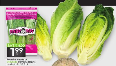 Romaine Hearts or Organic Romaine Hearts