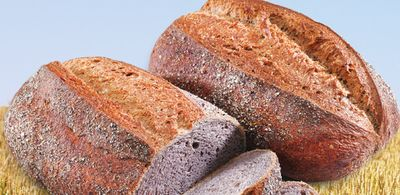 Dundas County Purple Corn Bread