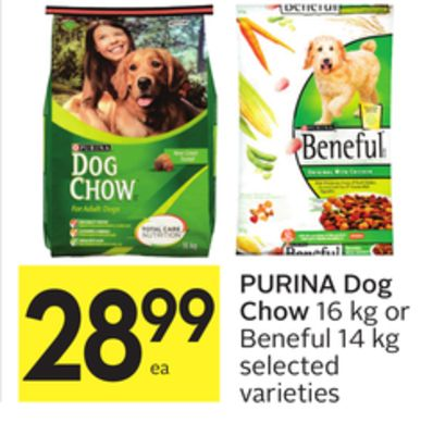 Purina Pro Plan Focus Large Breed Chicken & Rice Formula Dry Puppy Food Purina Deals of the Day · Shop Best Sellers · Read Ratings & Reviews · Shop Our Huge Selection.