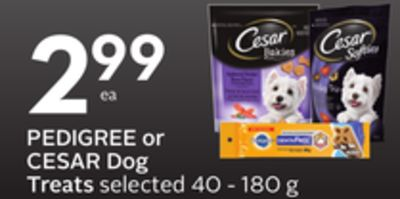 Pedigree or Cesar Dog Treats