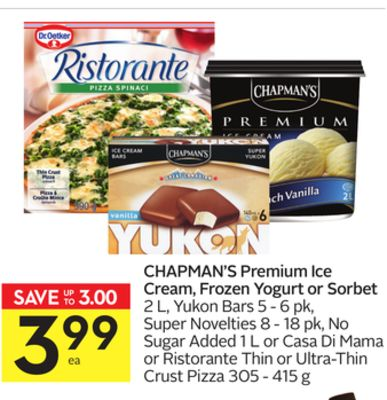 Chapman's Premium Ice Cream - Frozen Yogurt or Sorbet