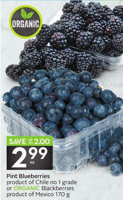 Pint Blueberries Product of Chile No 1 Grade or Organic Blackberries Product of Mexico 170 g