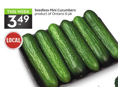 Seedless Mini Cucumbers