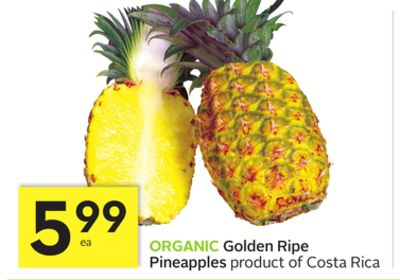 Organic Golden Ripe Pineapples