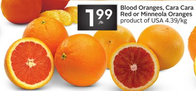 Blood Oranges - Cara Cara Red or Minneola Oranges