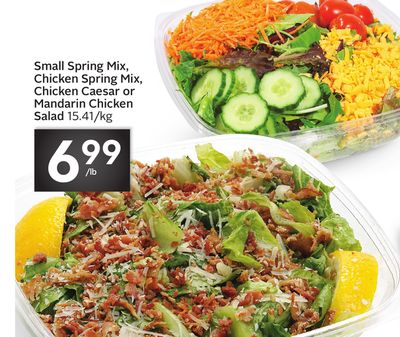 Small Spring Mix - Chicken Spring Mix - Chicken Caesar or Mandarin Chicken Salad