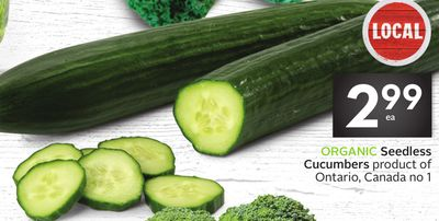 Organic Seedless Cucumbers