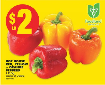 Hot House Red - Yellow or Orange Peppers
