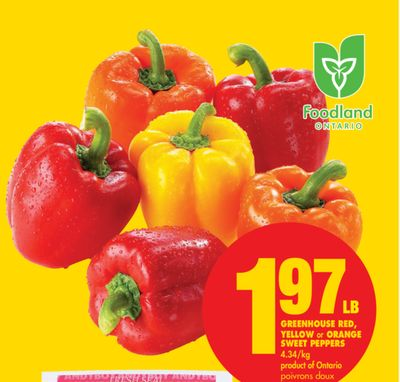 Greenhouse Red - Yellow or Orange Sweet Peppers