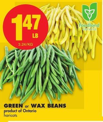 Green Or Wax Beans