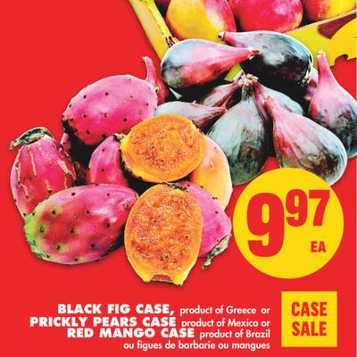 Black Fig Case - Prickly Pears Case - Red Mango Case