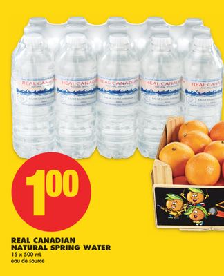 Real Canadian Natural Spring Water - 15 X 500 mL