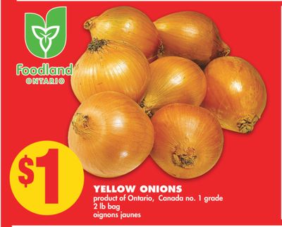 Yellow Onions - 2 Lb Bag