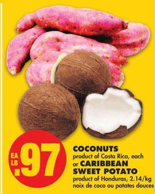 Coconuts or Caribbean Sweet Potato