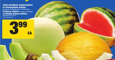 Mini Seedless Watermelon Or Honeydew Melon - Canary Melon Or Santa Claus Melon