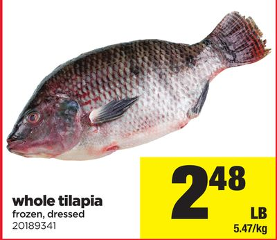 Whole Tilapia