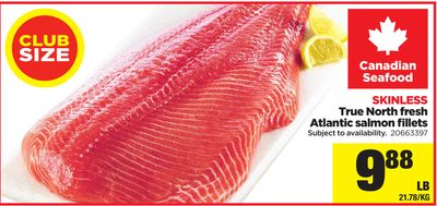 True North Fresh Atlantic Salmon Fillets