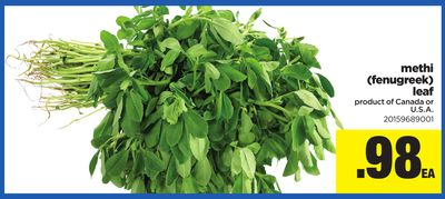Methi (Fenugreek) Leaf