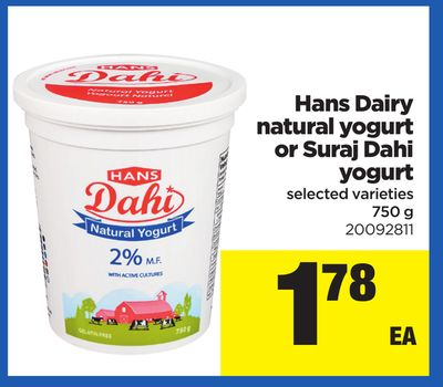 Hans Dairy Natural Yogurt Or Suraj Dahi Yogurt - 750 g