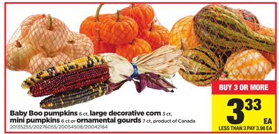 Baby Boo Pumpkins - 6 Ct - Large Decorative Corn - 3 Ct - Mini Pumpkins - 6 Ct Or Ornamental Gourds - 7 Ct