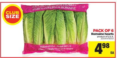 Romaine Hearts - Pack Of 6