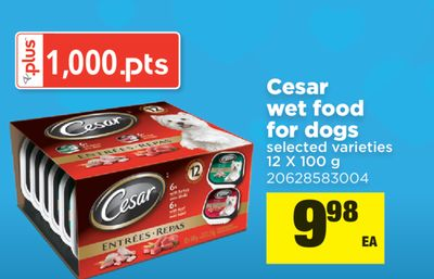 Cesar Wet Food For Dogs - 12 X 100 g