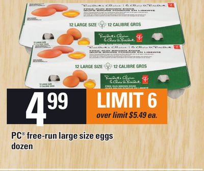 PC Free-run Large Size Eggs