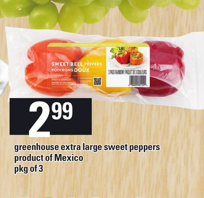 Greenhouse Extra Large Sweet Peppers - Pkg of 3