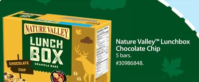 Nature Valley Lunchbox Chocolate Chip
