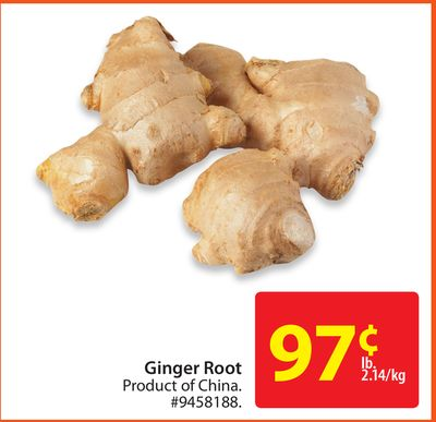 Where can you buy ginger root