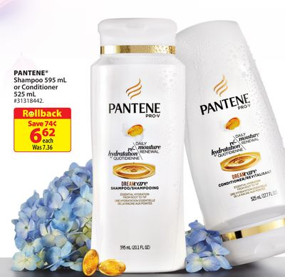 Pantene Shampoo 595 mL or Conditioner