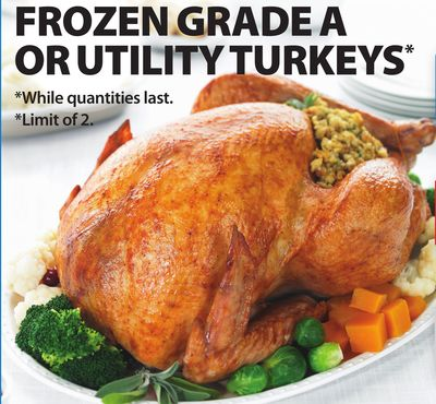 3 Kg - 5 Kg Frozen Grade A Or Utility Turkeys