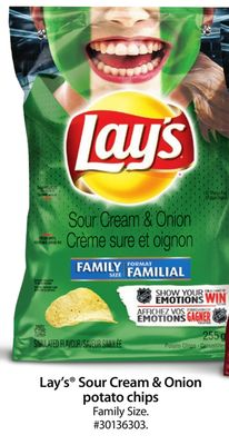 Lay's Sour Cream & Onion Potato Chips Family Size