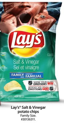 Lay's Salt & Vinegar Potato Chips Family Size