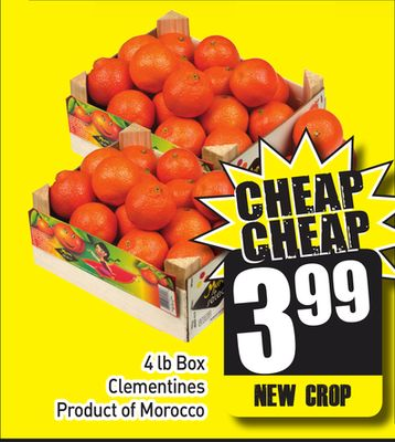 4 Lb Box Clementines Product of Morocco