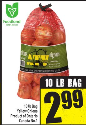 10 Lb Bag Yellow Onions Product of Ontario Canada No.1