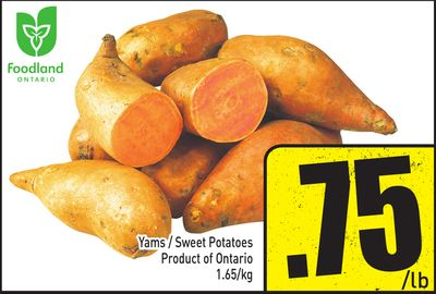 Yams / Sweet Potatoes Product of Ontario 1.65/kg