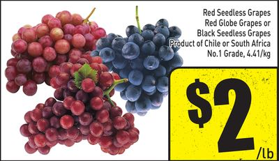 Red Seedless Grapes Red Globe Grapes or Black Seedless Grapes Product of Chile or South Africa No.1 Grade - 4.41/kg