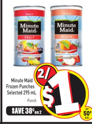 Minute Maid Frozen Punches Selected 295 mL